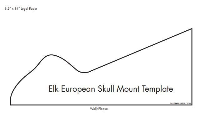 Homemade DIY Elk European Skull Mount Template